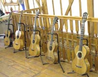 early guitars in the collection